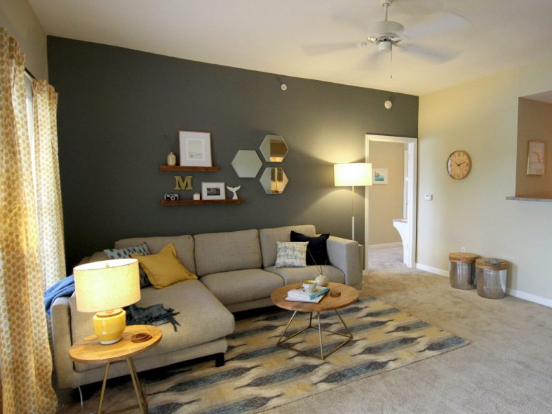 TGM Malibu Lakes Apartments Living Room 2